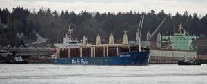 Photo of COOK STRAIT ship
