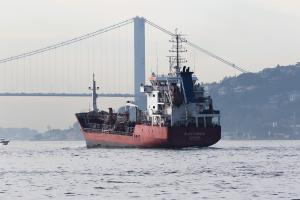 Photo of ALEV KAMAN ship