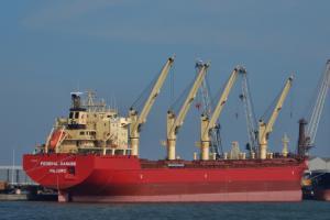 Photo of FEDERAL DANUBE ship