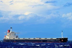Photo of SHINYO ALLIANCE ship