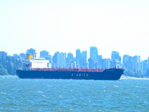 Photo of SW SOUTHPORT I ship