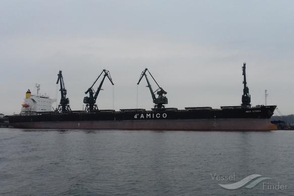 SEA TAURUS photo
