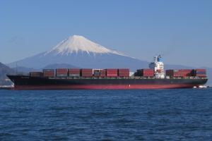 Photo of BELLATRIX I ship