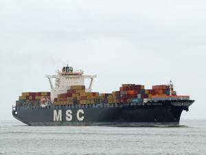 Photo of MSC MARINA ship