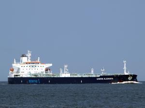 Photo of MINERVA ELEONORA ship