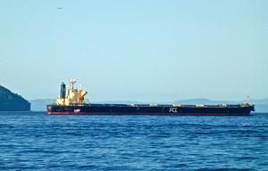 Photo of IKAN BILIS ship
