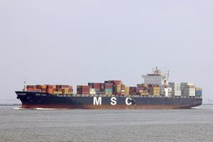 Photo of MSC LISA ship