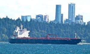 Photo of GULF PEARL ship