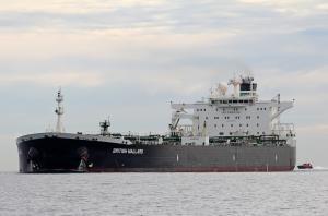 Photo of BRITISH MALLARD ship