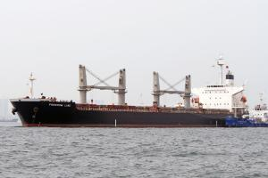 Photo of FREEDOM LINE ship