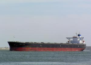 Photo of BULK INDIA ship