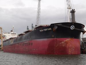 Photo of YASA FORTUNE ship
