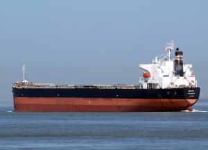 Photo of BALTIA ship