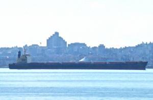 Photo of ARGOLIS ship