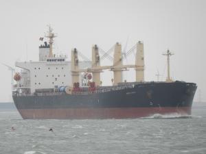 Photo of NITON COBALT ship