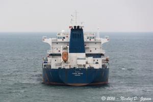 Photo of TOWER BRIDGE ship