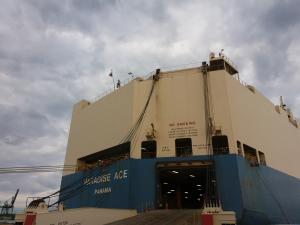 Photo of PARADISE ACE ship