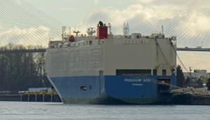 Photo of FREEDOM ACE ship