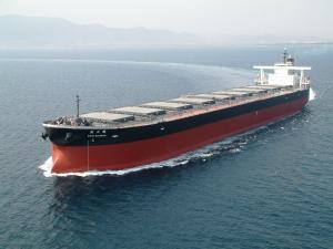 Photo of SHIN NICHIHO ship