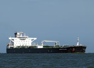 Photo of BRITISH FALCON ship