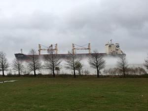 Photo of SPAR TAURUS ship