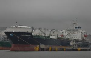 Photo of FALCON NOSTOS ship