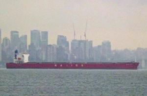 Photo of NAVIOS TAURUS ship