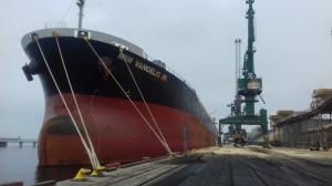 Photo of MIM VANGELIS JR ship