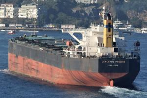 Photo of LOWLANDS PHOENIX ship