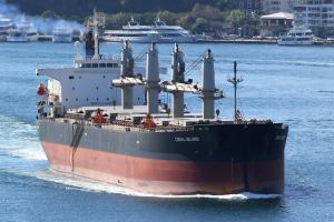 Photo of CORAL ISLAND ship