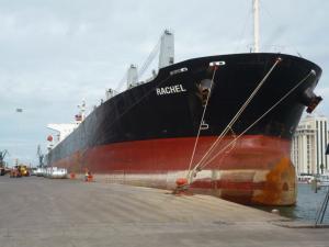 Photo of OCEAN TULIP ship