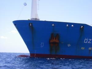 Photo of PAVINO ship
