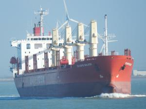 Photo of DS SOFIE BULKER ship