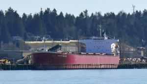 Photo of PALMA BULKER ship