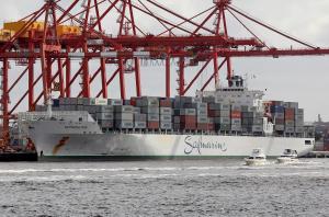 Photo of SAFMARINE MERU ship