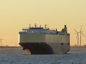 Photo of MORNING CHORUS ship