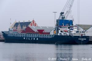 WILSON AMSTERDAM (IMO 9313735) Photo