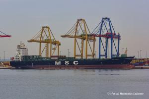 MSC HANNAH (IMO 9316347) Photo