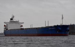 Photo of KAVO PALOMA ship