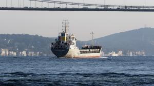 Photo of M-V SAFIYE ANA ship