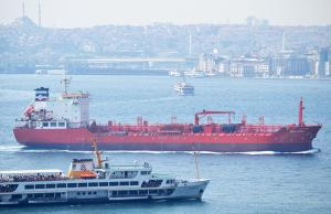Photo of M/T SEA LION I ship