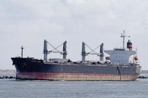 Photo of GANT MUSE ship