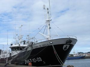 Photo of PEDRA DA GRELO ship