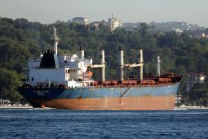 Photo of TAURUS TWO ship