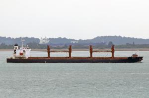 Photo of TORENIA ship