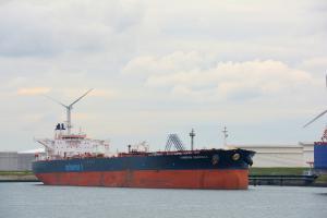 Photo of MINERVA GEORGIA ship