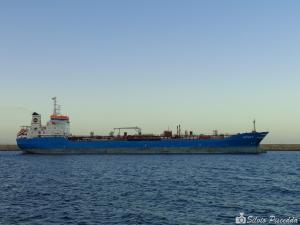 Photo of DATTILO  M ship