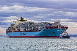 Photo of MAERSK TAURUS ship