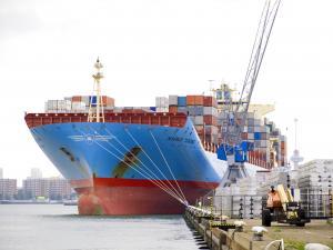 Photo of MAERSK TUKANG ship