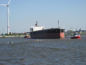 Photo of GLORY NAVIGATOR ship
